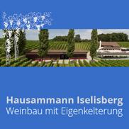 Kundenreferenz: CMS Redesign für Hausammann Iselisberg