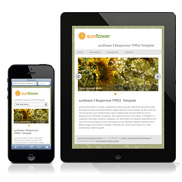 Responsive TYPO3 Template sunflower