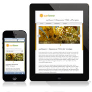 Responsive TYPO3 Template sunflower 2 als Distribution für TYPO3 6.2