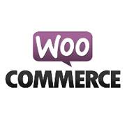 WooCommerce: Nur kostenlosen Versand anzeigen